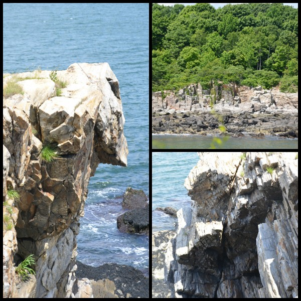 fort williams 11