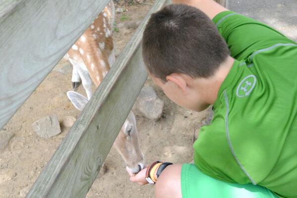 York Zoo 8