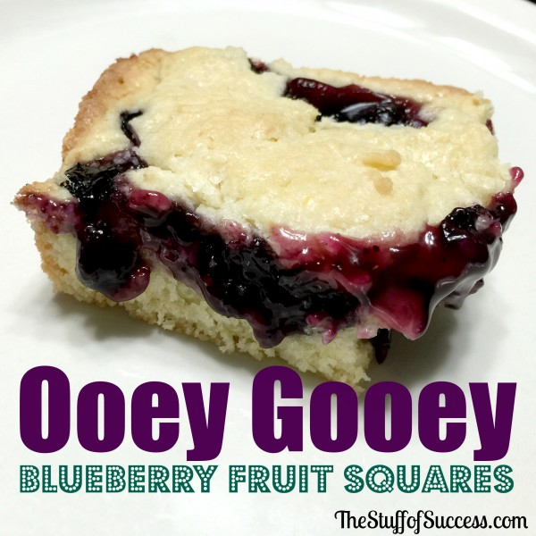 ooey gooey blueberry fruit squares