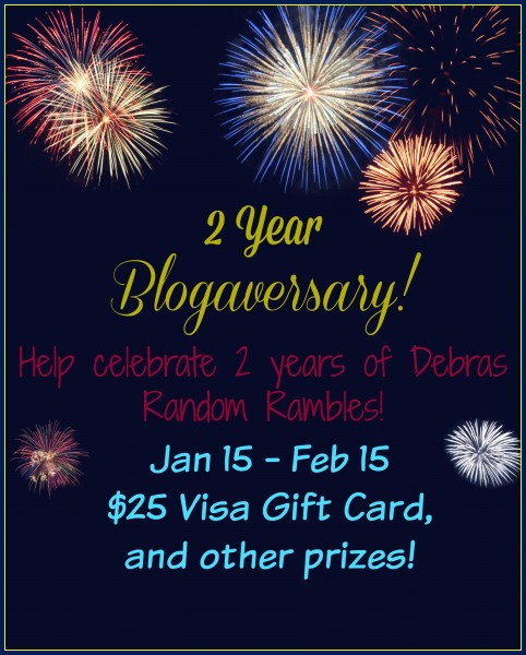 2 Year Blogaversary Party