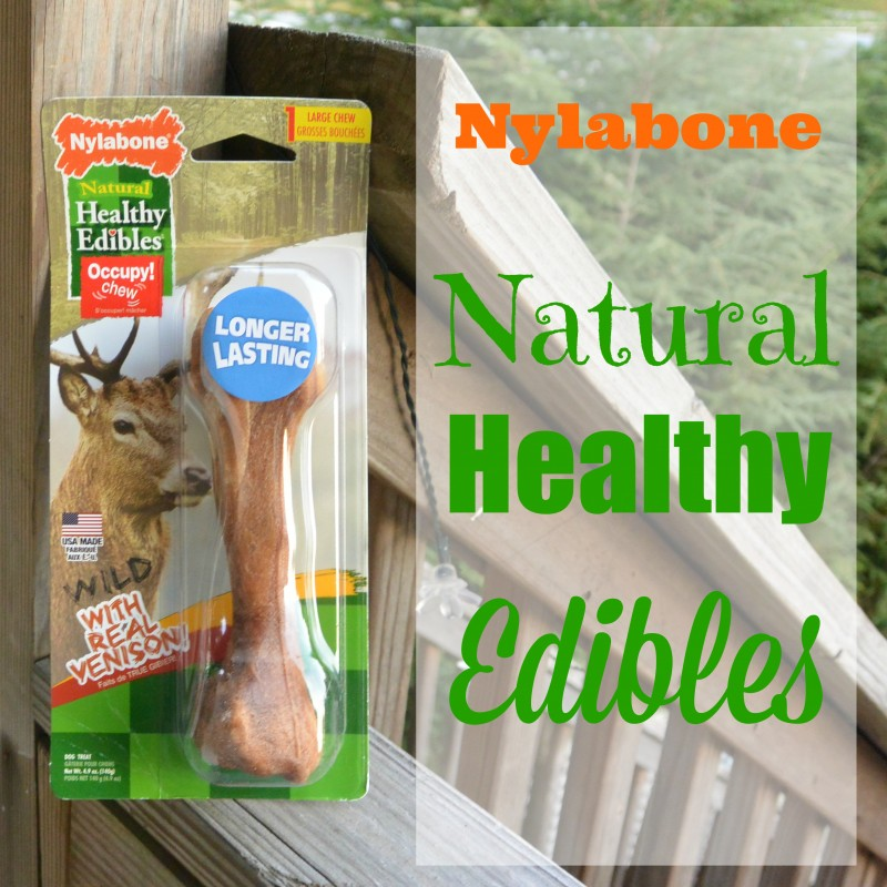 Nylabone Natural Healthy Edibles