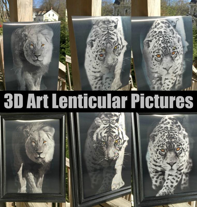 3D Art Lenticular Pictures