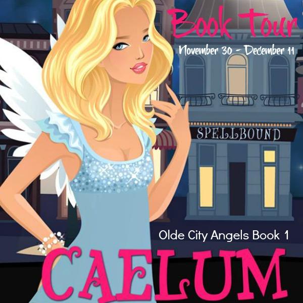 CaelumBookTour