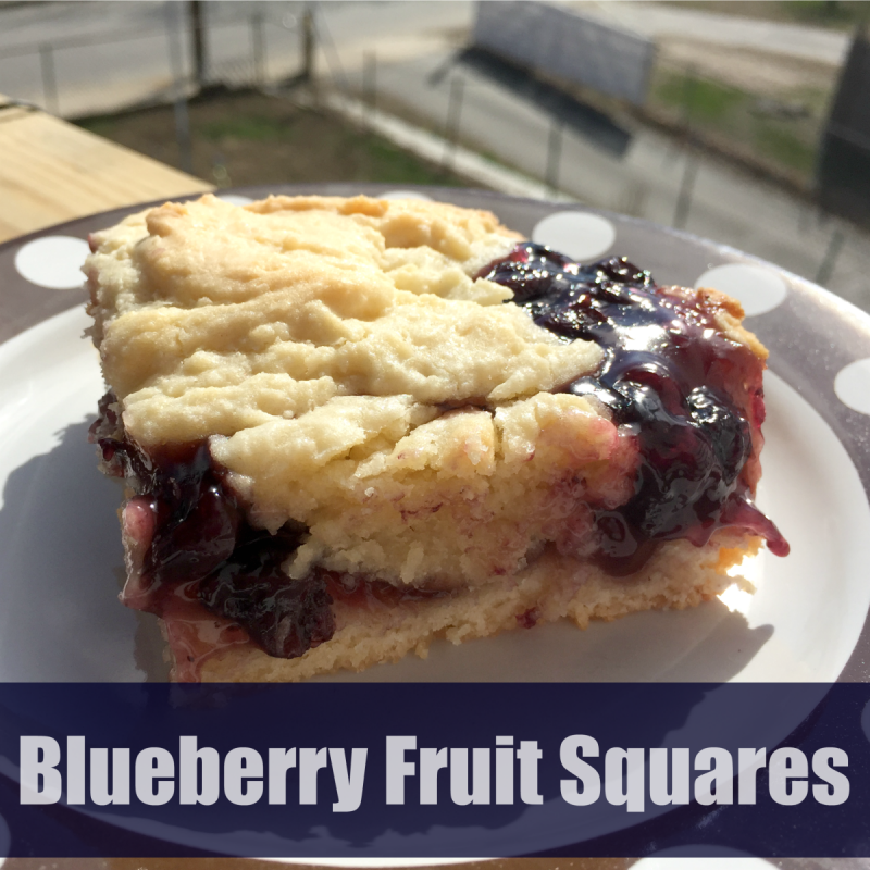 Blueberry Fruit Squares