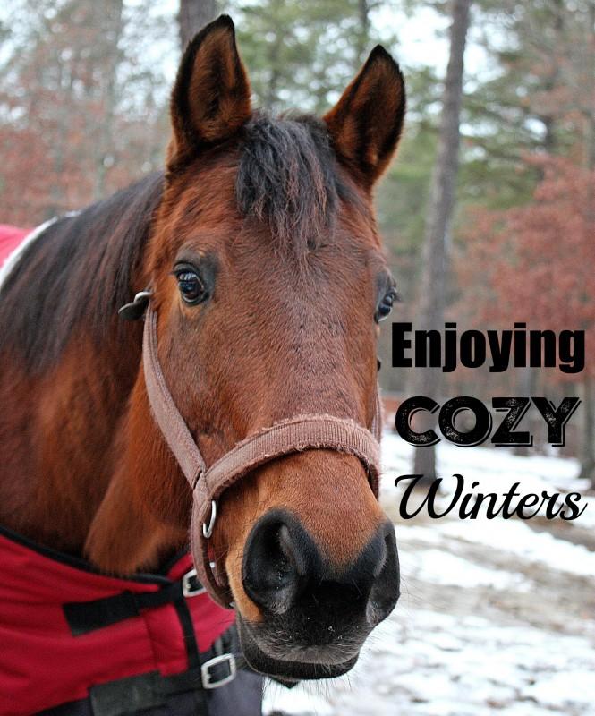 Enjoying Cozy Winters