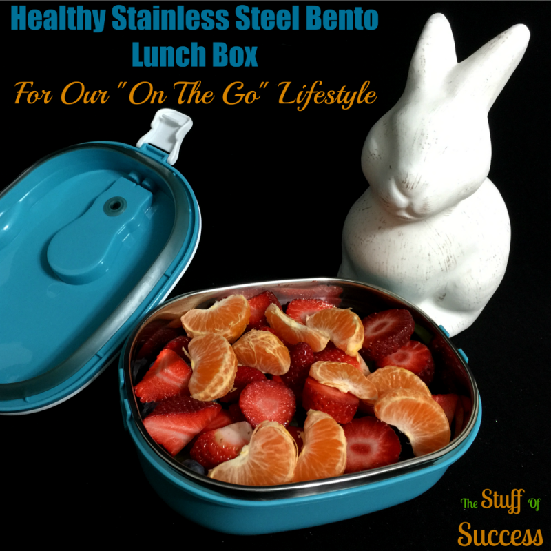 Healthy Stainless Steel Bento Lunch Box For Our On The Go Lifestyle