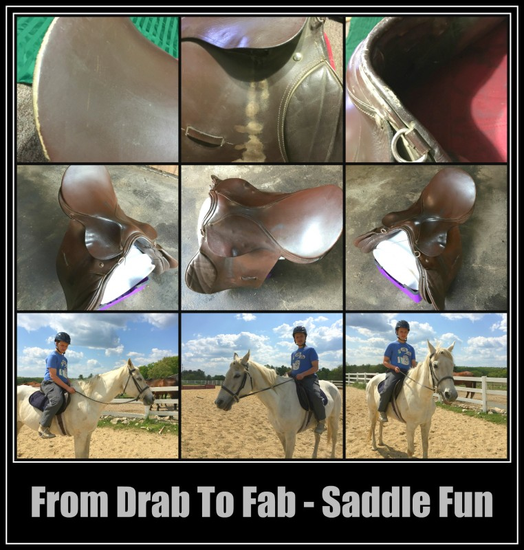 From Drab to Fab Saddle Fun