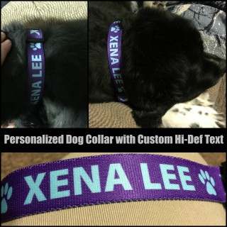 Personalized Dog Collar with Custom Hi-Def Text