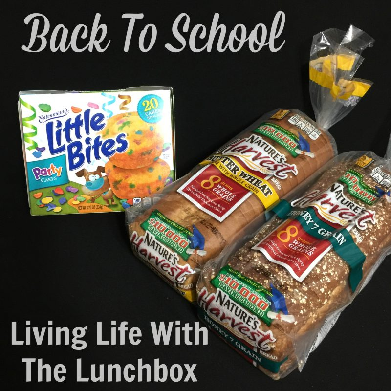 Back To School Living Life With The Lunchbox