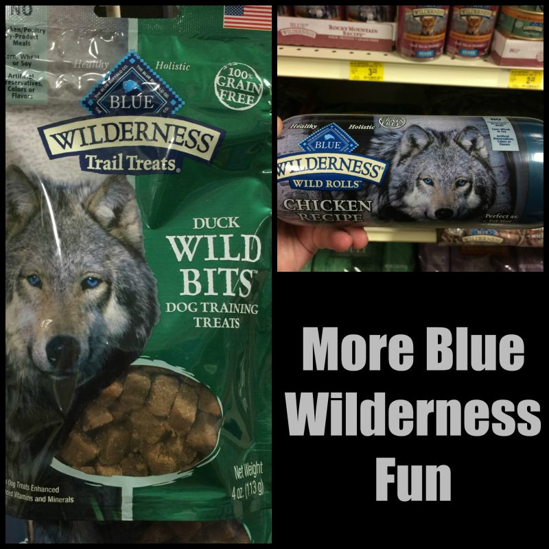 more-blue-wilderness-fun
