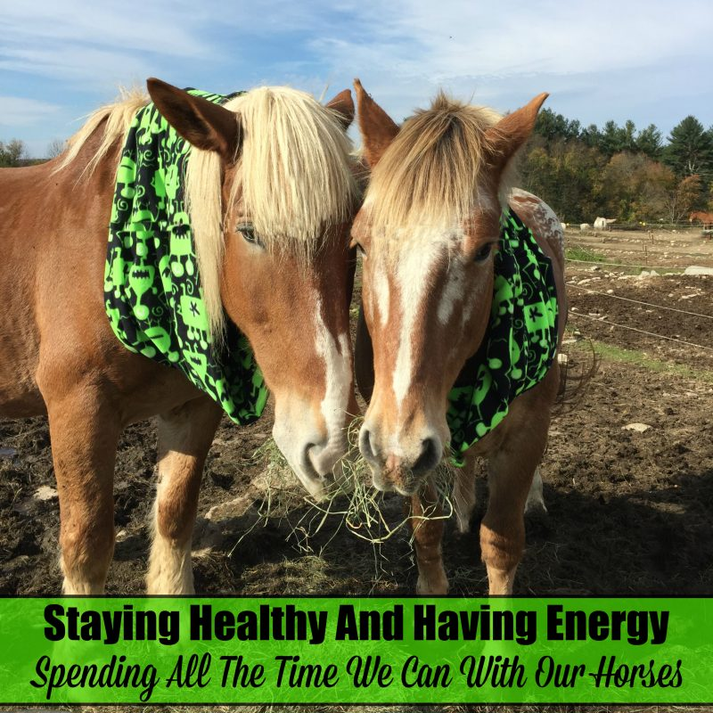 staying-healthy-for-the-horses