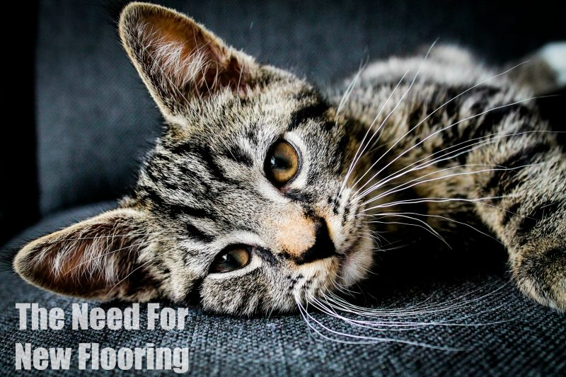 the-need-for-new-flooring