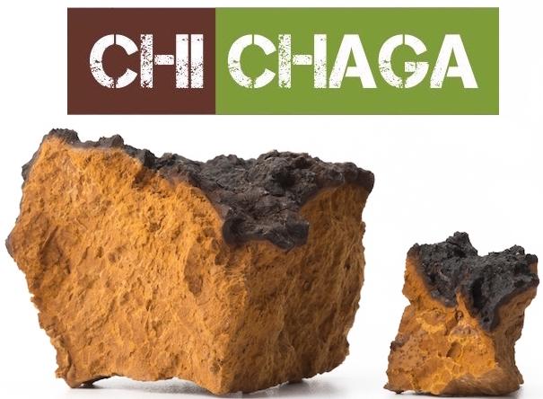 chi_chaga_2