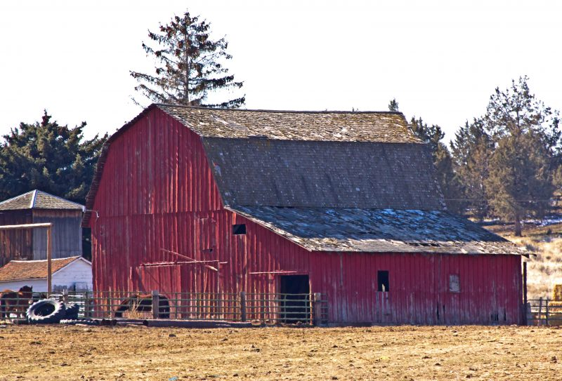old-barn-cabin_mys4dwto