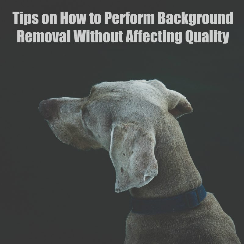 tips-on-how-to-perform-background-removal-without-affecting-quality