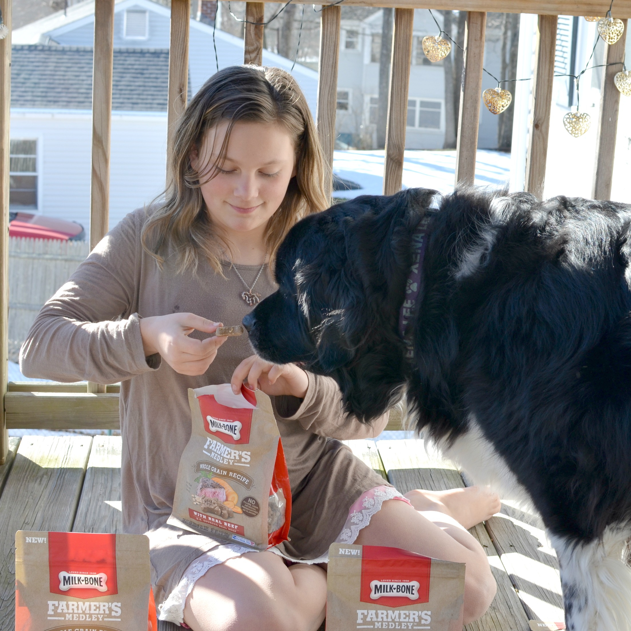 Milk-Bone Farmer's Medley For Better Snacking @milkbone #nationaldogbiscuitday #milkbone #ad
