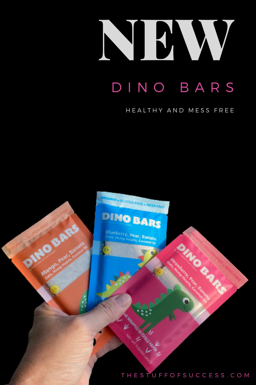 NEW Dino Bars - Healthy and Mess Free