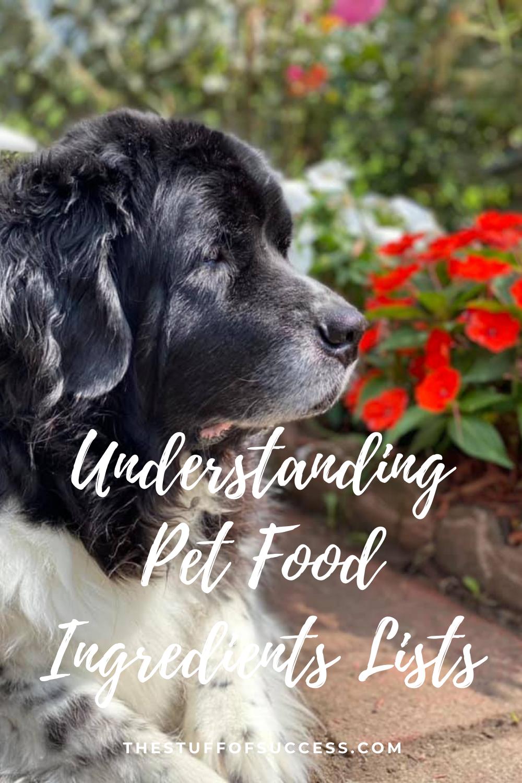 Understanding Pet Food Ingredients Lists